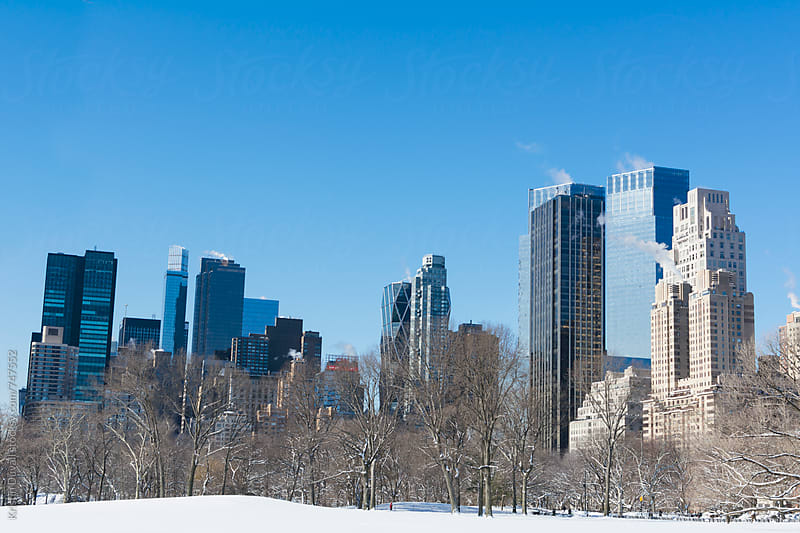 Central Park's Sheep Meadow in winter. New York City. by Kristin Duvall for Stocksy United