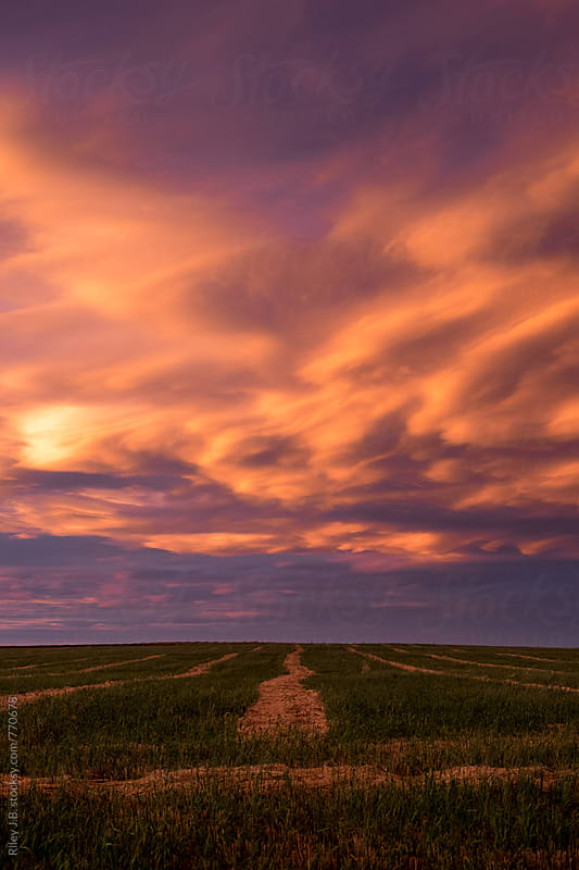 Impressive clouds at sunset over a cultivated farm field by Riley Joseph for Stocksy United