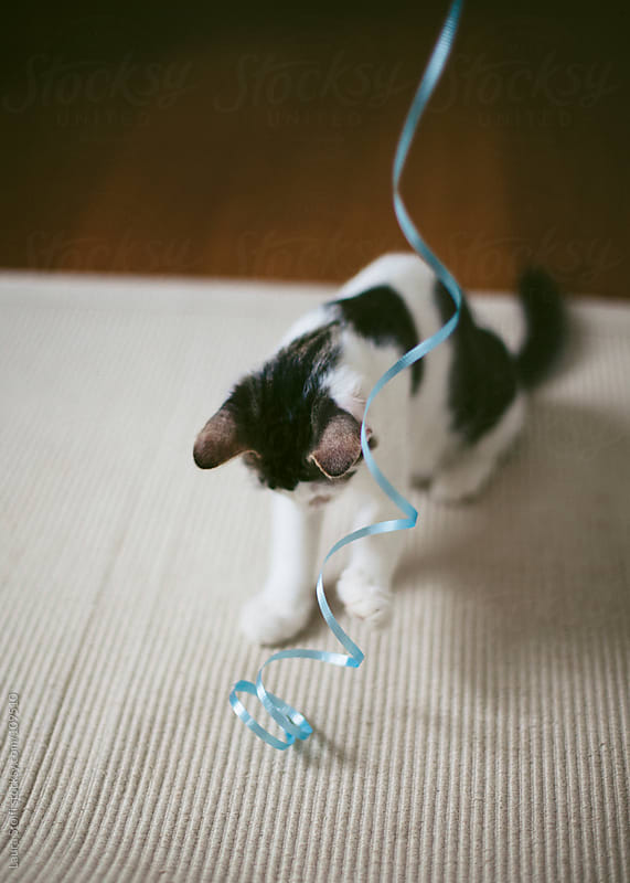 Kitten playing with ribbon on a carpet by Laura Stolfi for Stocksy United