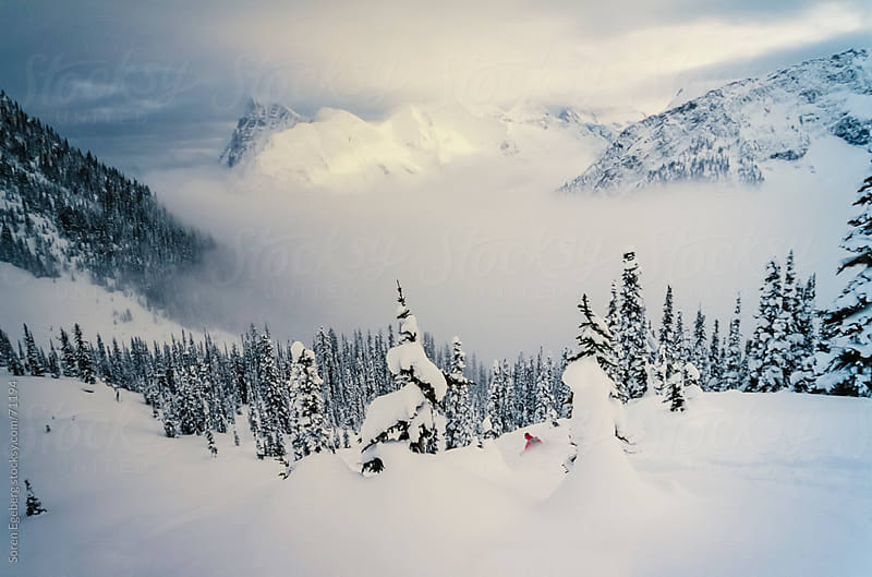 Man tree skiing powder snow in winter mountains of Rogers Pass, British Columbia by Soren Egeberg for Stocksy United