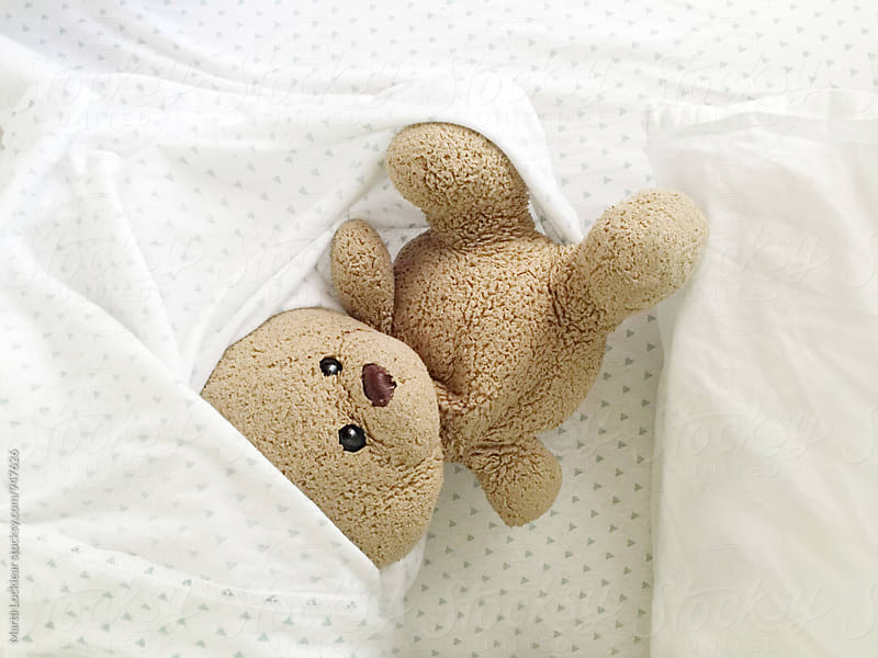 Teddy Bear in a messy bed by Marta Locklear for Stocksy United
