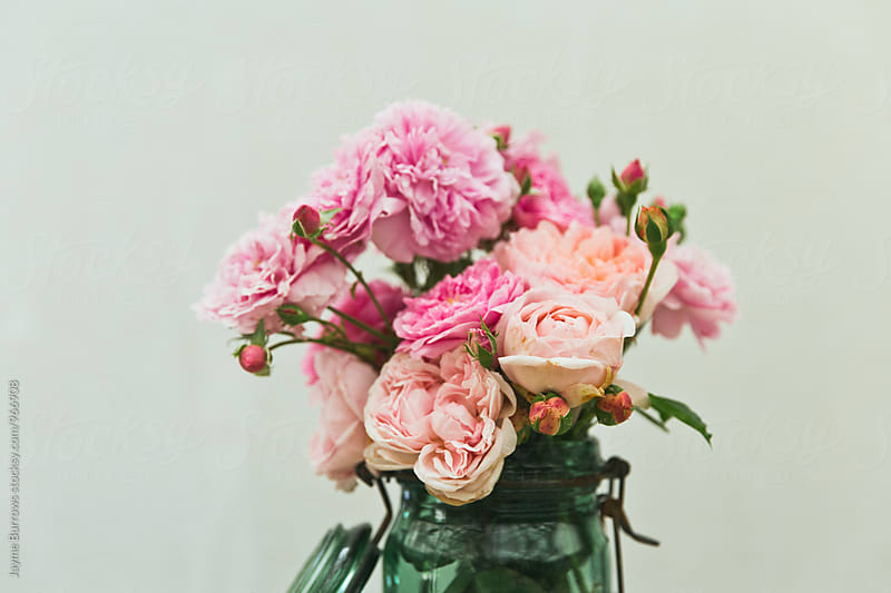 Varieties of Pink Roses by Jayme Burrows for Stocksy United