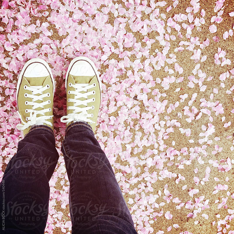 Sneakers and Flower Petals by ALICIA BOCK for Stocksy United