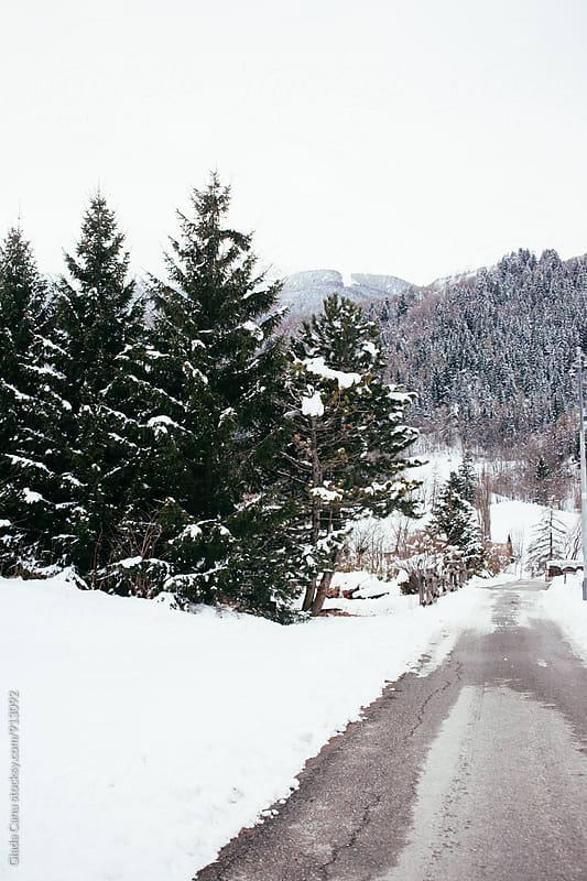 Snowy road by Giada Canu for Stocksy United