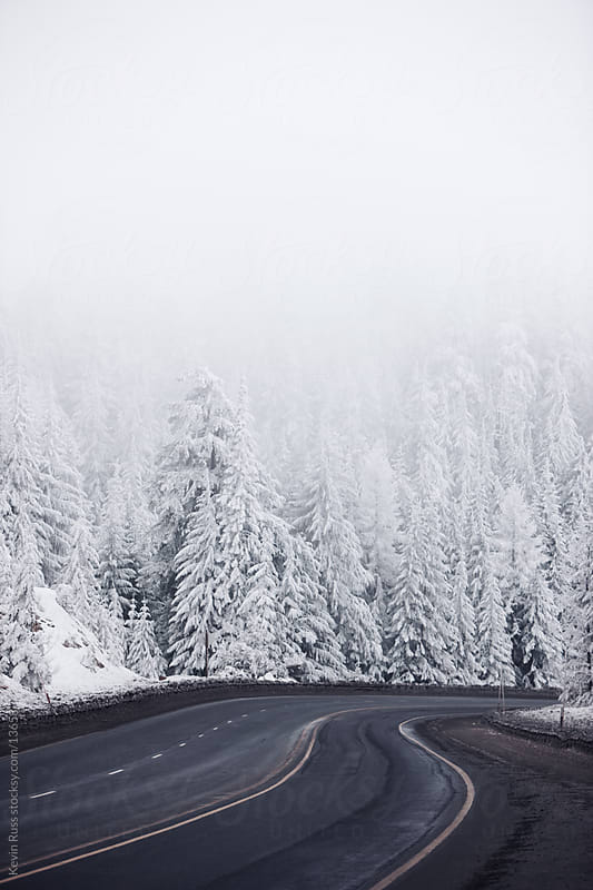 Winter Forest Road by Kevin Russ for Stocksy United