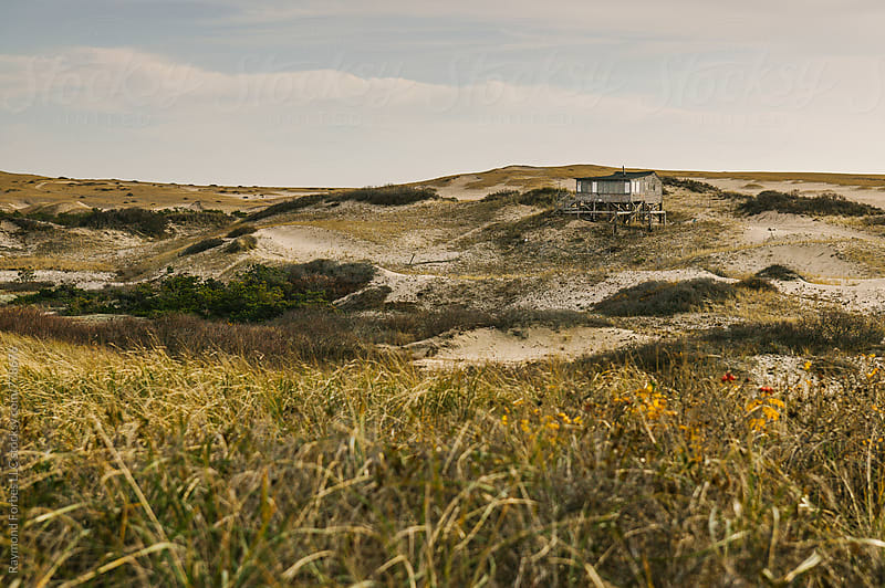 Provincetown Dunes Cape Cod, Massachusetts by Raymond Forbes LLC for Stocksy United