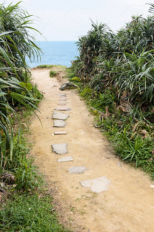 View on path towards sea by Lawren Lu for Stocksy United