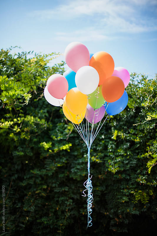 Bunch of colorful balloons floating in garden with green shrub on background by Laura Stolfi for Stocksy United