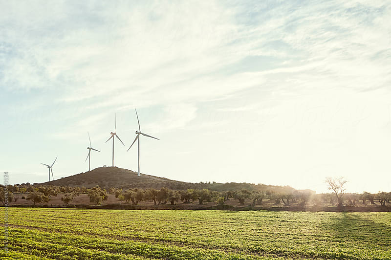 Wind turbines by Luis Cerdeira for Stocksy United