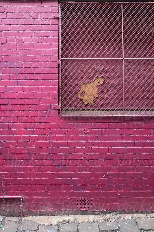 Painted Pink Brick Wall by Rowena Naylor for Stocksy United