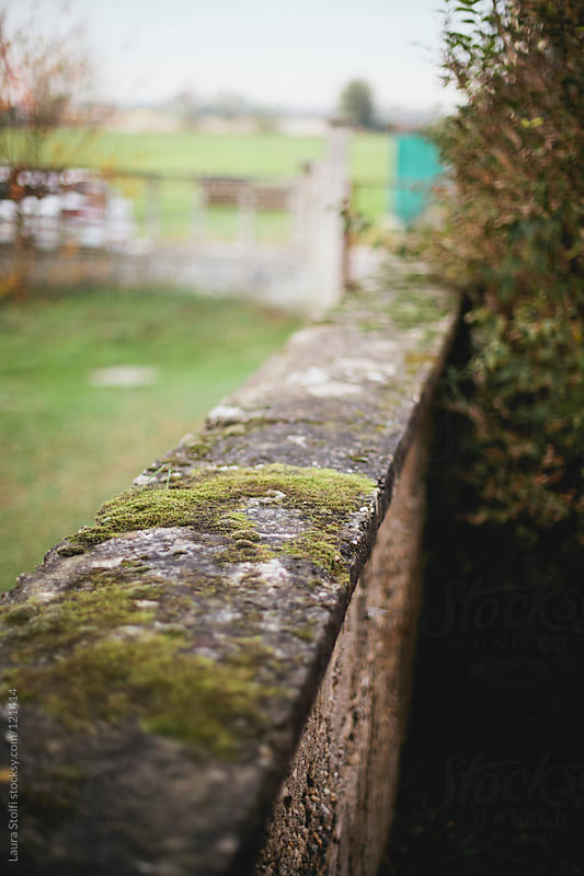 Detail of covered in moss ancient stone wall  by Laura Stolfi for Stocksy United