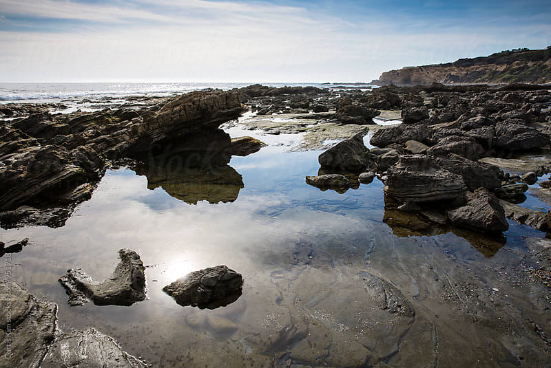 Tide Pools at the beach by Curtis Kim for Stocksy United