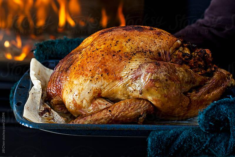Stuffed Turkey  by Jill Chen for Stocksy United