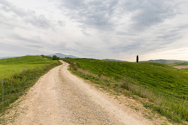 Unpaved road in tuscan landscape by Marilar Irastorza for Stocksy United