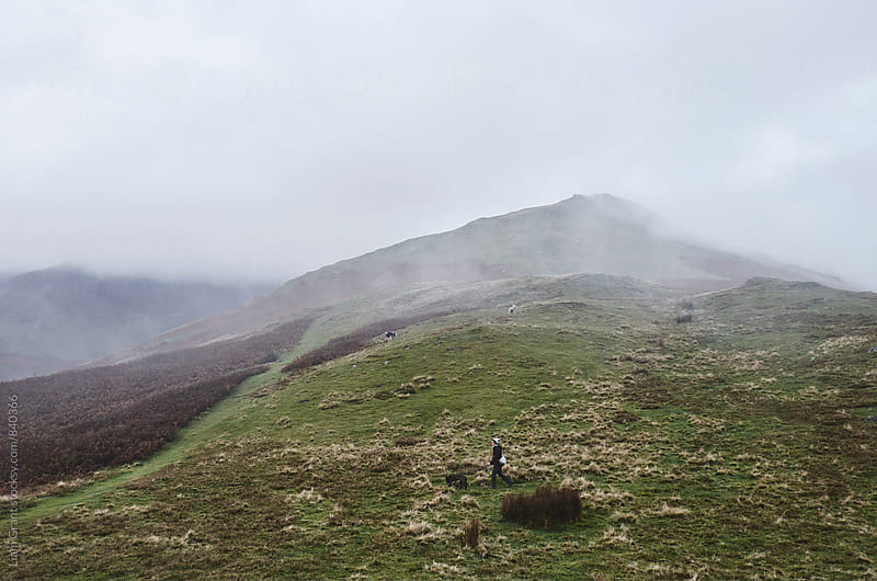 Female walking her dog in the mountains. Newlands Hause, Cumbria, UK. by Liam Grant for Stocksy United