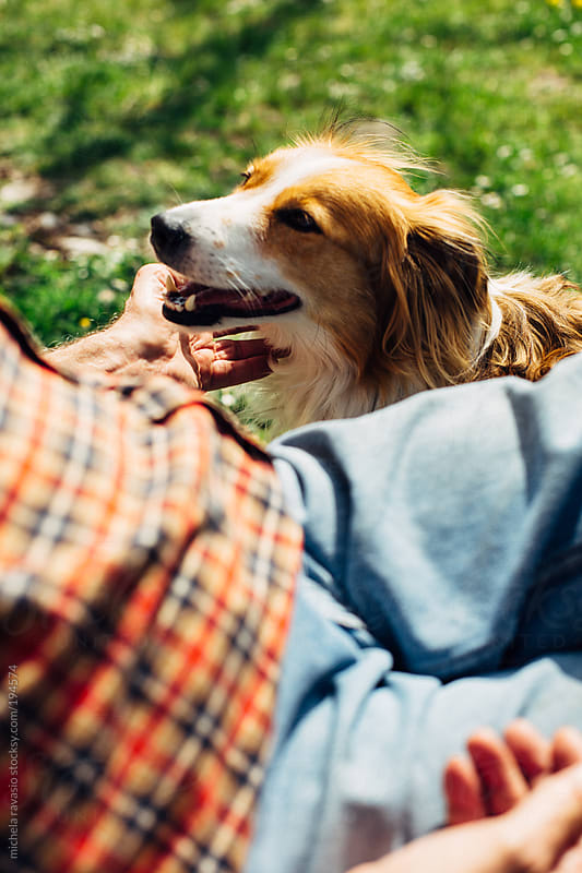 Elderly man with his dog by michela ravasio for Stocksy United