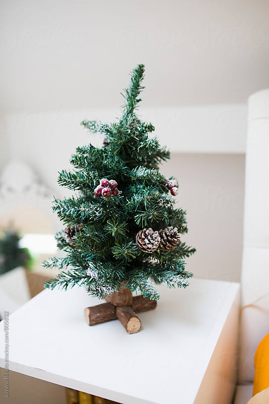 Mini Christmas tree on a white table by Jovana Rikalo for Stocksy United