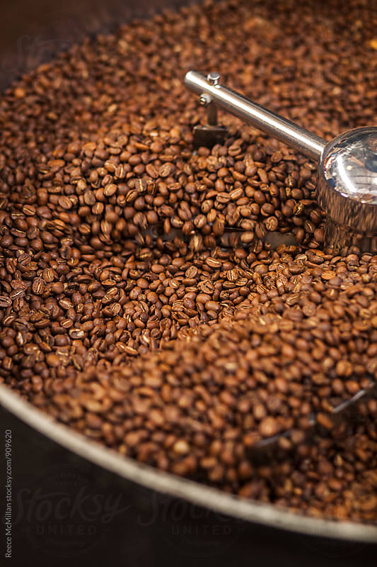 Coffee Beans at a coffee roaster by Reece McMillan for Stocksy United