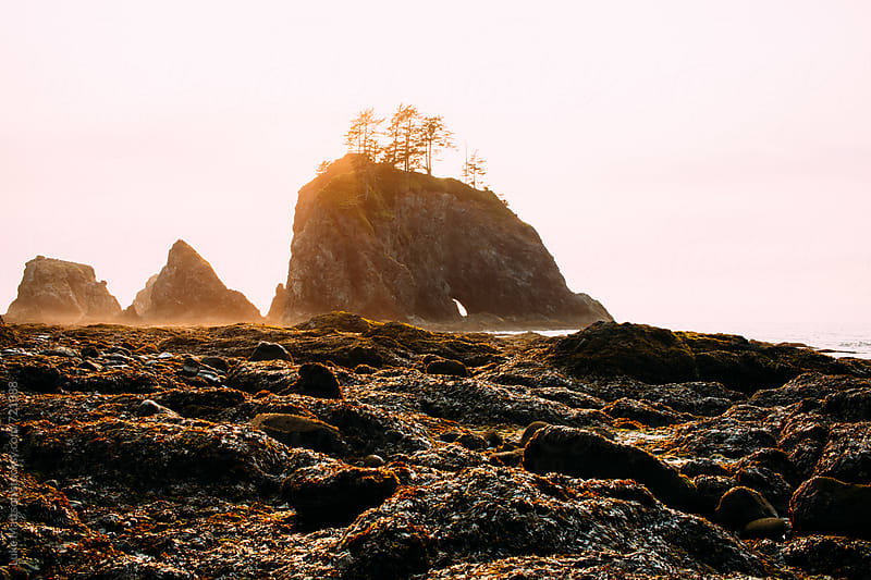 A Magnificent Rock Arch Stands Just Off Shore At Sunset Along The Washington Coast by Luke Mattson for Stocksy United