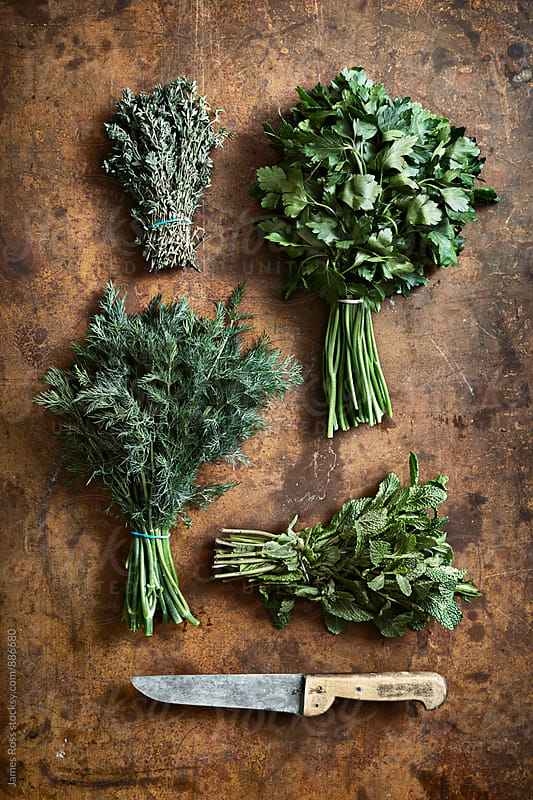 Fresh herbs and a knife by James Ross for Stocksy United