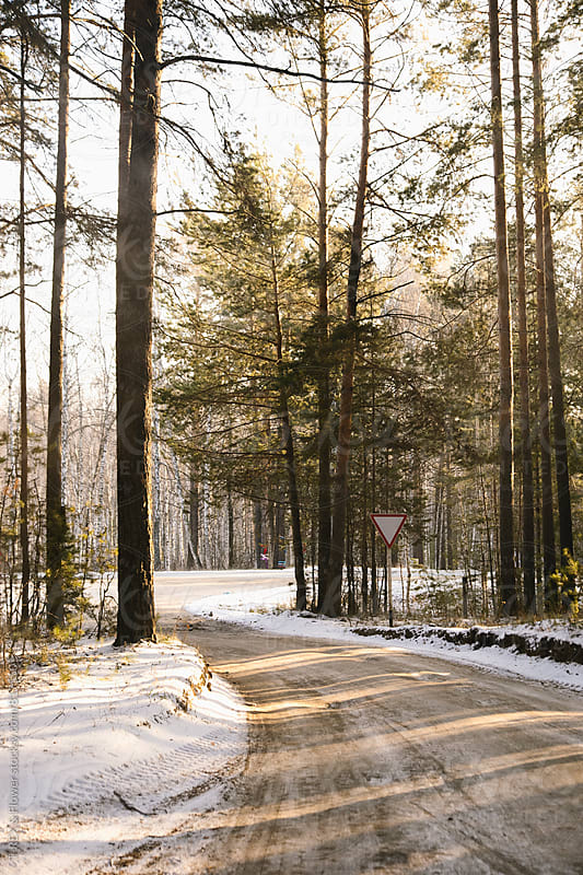 Snowed road with triangle sign in forest by Danil Nevsky for Stocksy United