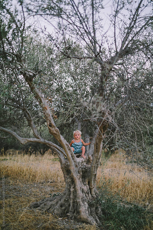 Little baby girl sitting on the olive tree by Evgenij Yulkin for Stocksy United