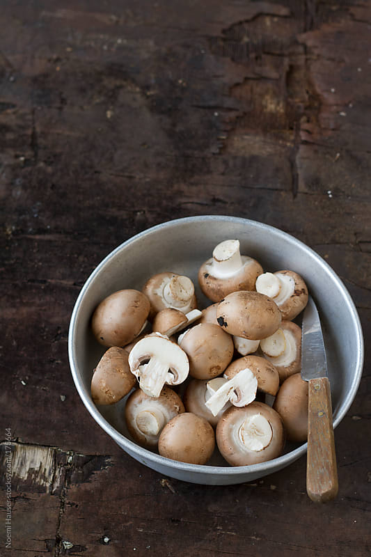 Brown button mushroom by Noemi Hauser for Stocksy United