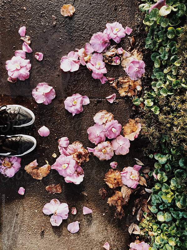 sneakers standing by flowers on the sidewalk by KATIE + JOE for Stocksy United
