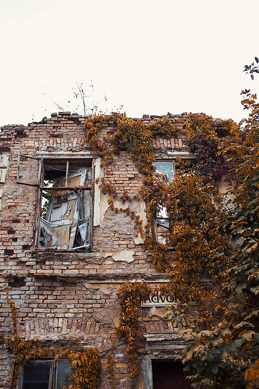 Old house covered in orange autumn leaves by Maja Topcagic for Stocksy United