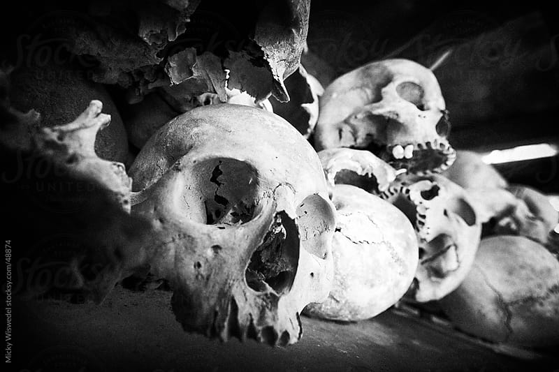 Human skulls, remains of the genocide by the Khmer Rouge in Cambodia by Micky Wiswedel for Stocksy United