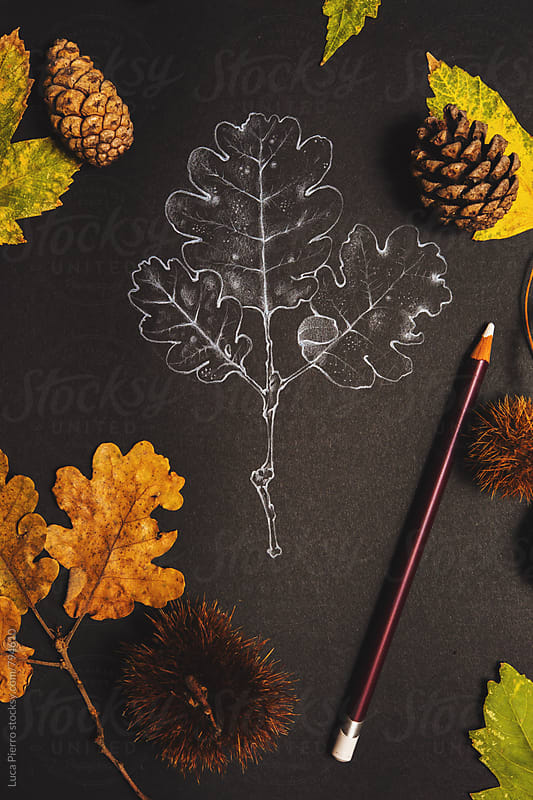 Autumn theme background with  chestnut leaves by Luca Pierro for Stocksy United
