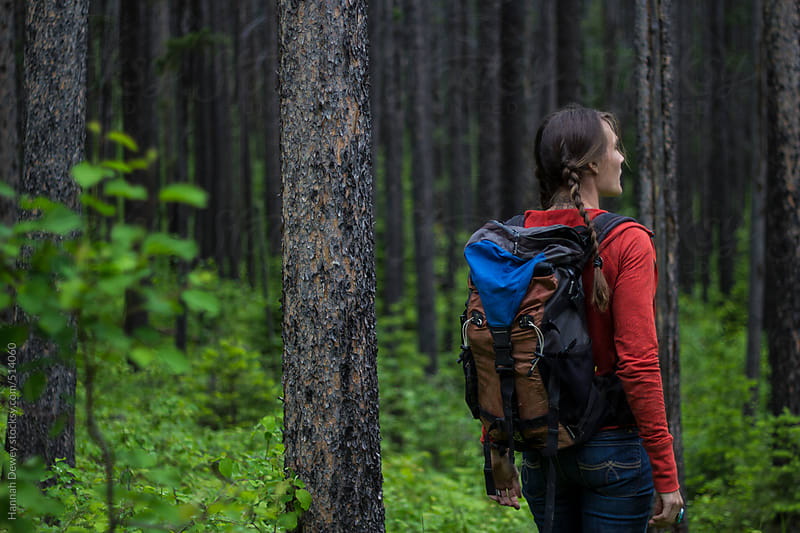Woman hikes through the forest looking up into the trees by Hannah Dewey for Stocksy United