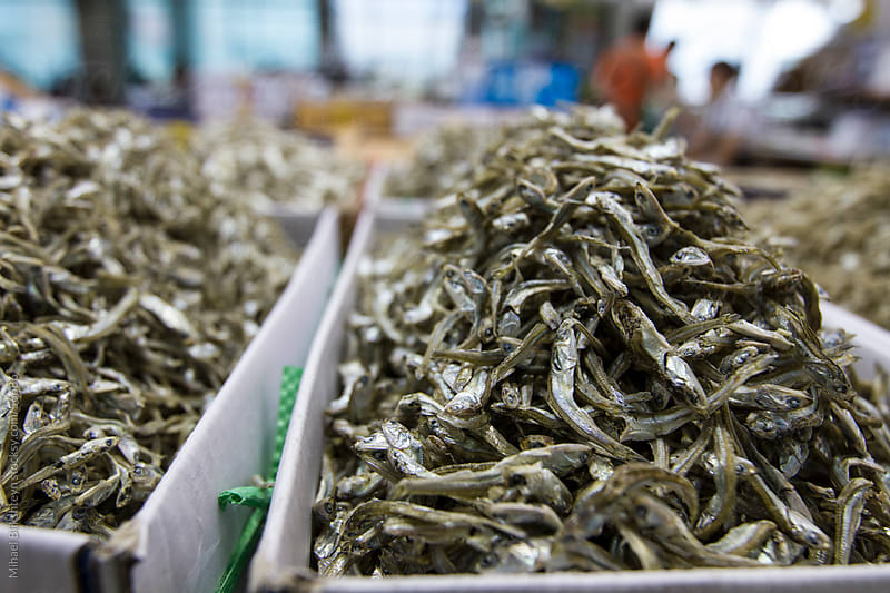 Dried fish for sale at an Asian seafood market by Mihael Blikshteyn for Stocksy United