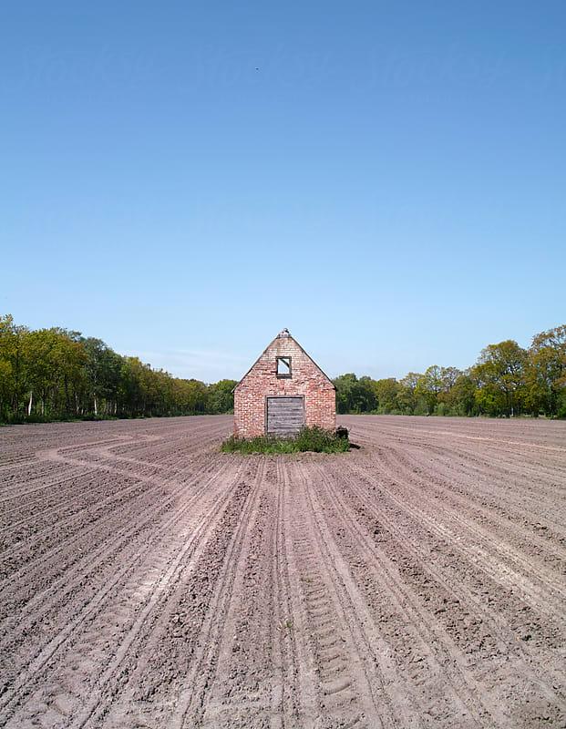Little old barn in a field by Marcel for Stocksy United