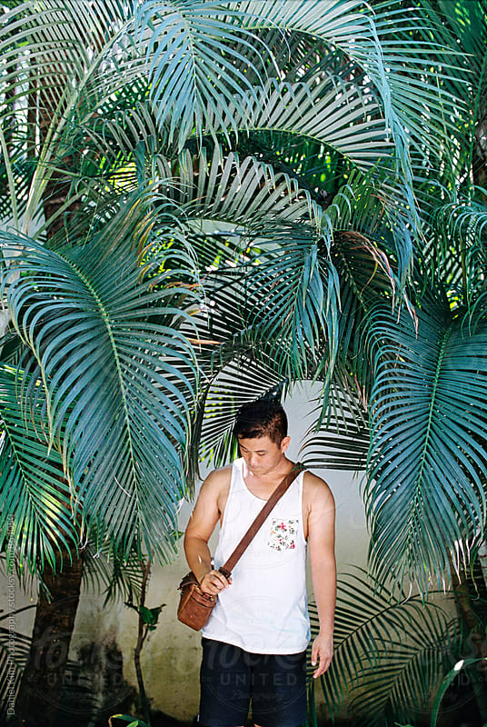 Young man standing in between palm fronds by Daniel Kim Photography for Stocksy United
