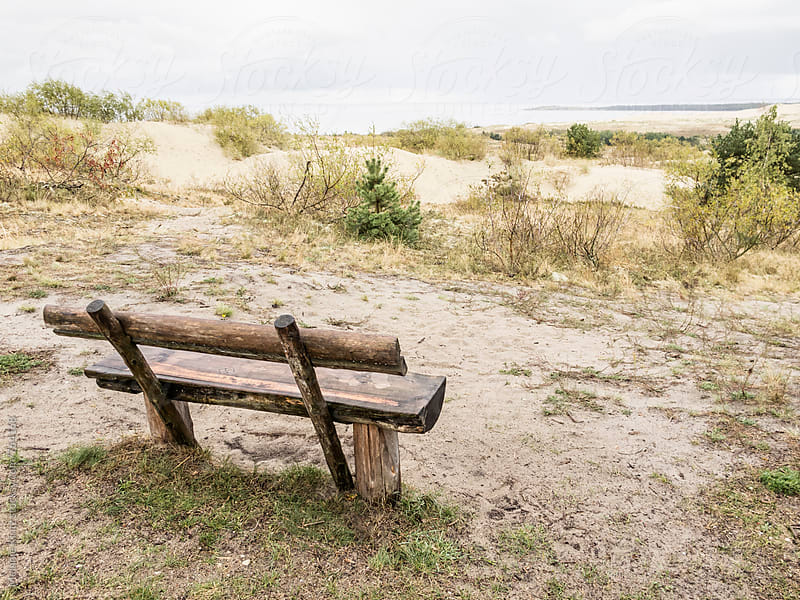 Bench overlooking dunes at the Curonian Spit by Melanie Kintz for Stocksy United