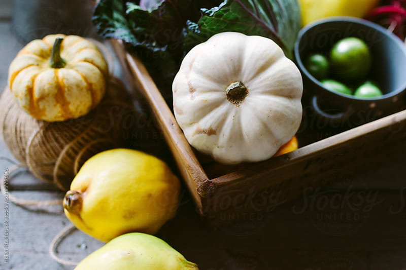 Squash and quince by Helen Rushbrook for Stocksy United