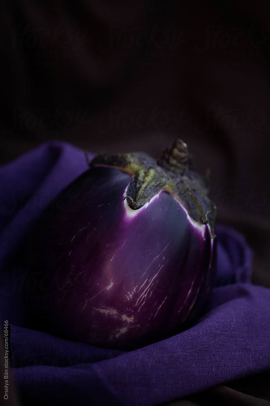 Eggplant with dark background by Orsolya Bán for Stocksy United