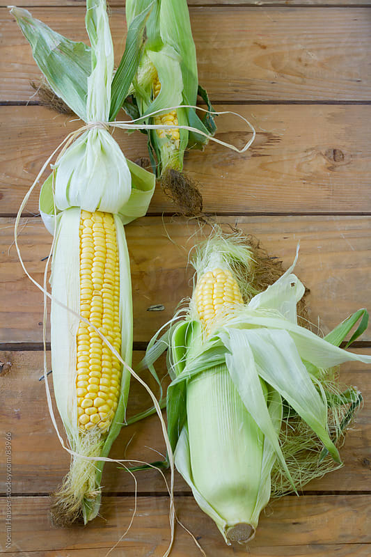 Corn on the cob  by Noemi Hauser for Stocksy United