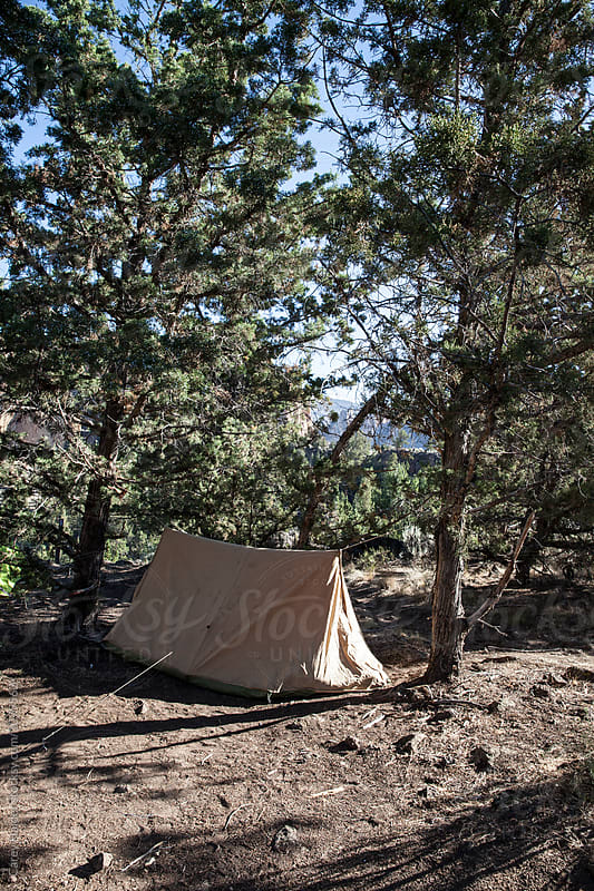 A Tent by Carey Haider for Stocksy United