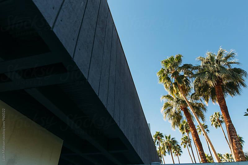 Palm Trees Against Blue Sky Near Resort Building by Luke Mattson for Stocksy United