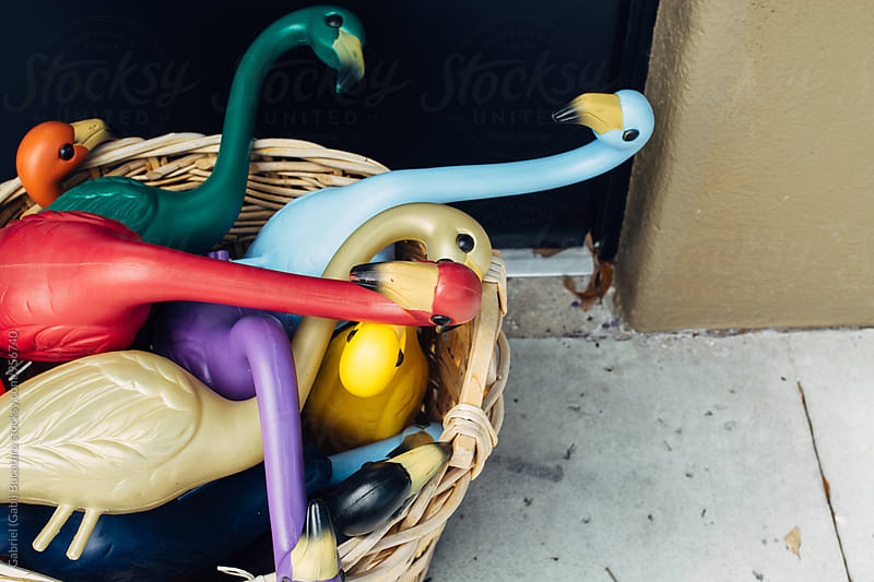 Various color plastic flamingos in a wicker basket by Gabriel (Gabi) Bucataru for Stocksy United