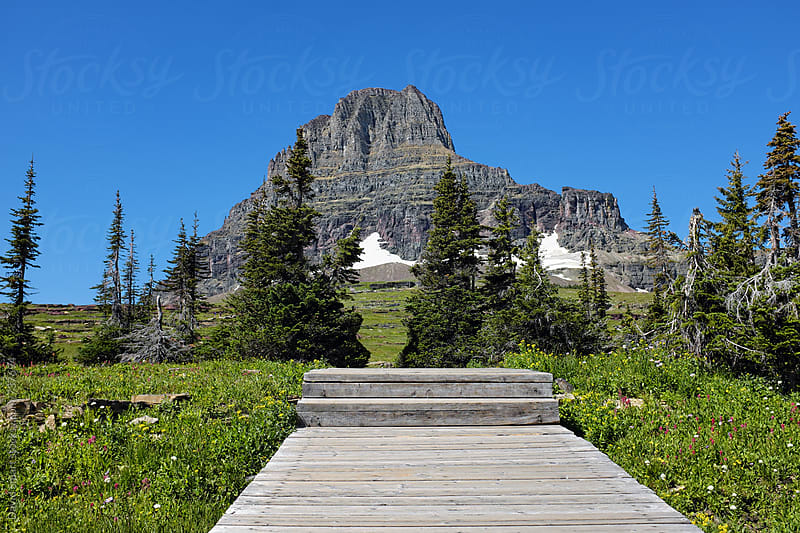 Clements Mountain seen from boardwalk on Hidden Lake trail near Logan Pass in Glacier National Park by David Smart for Stocksy United