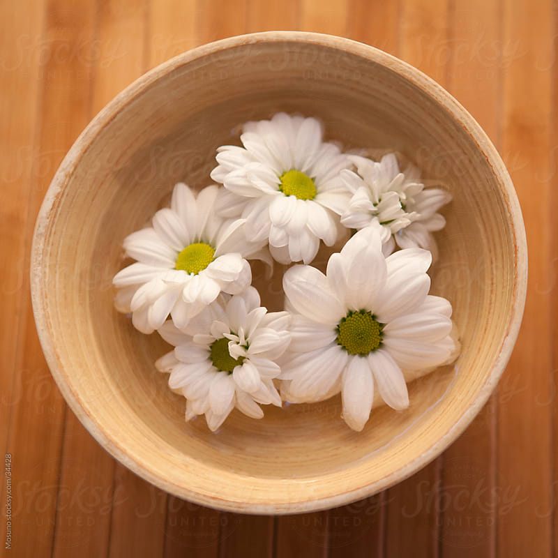 White daisies floating in a wooden bowl. by Mosuno for Stocksy United