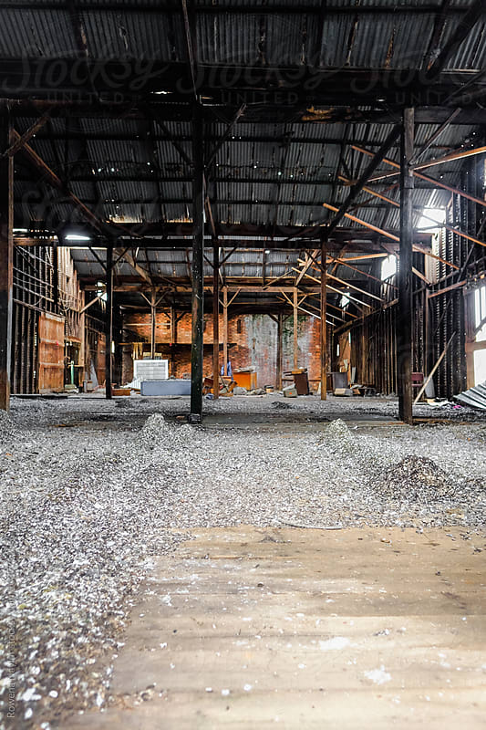 Abandoned warehouse full of Pidgeon droppings by Rowena Naylor for Stocksy United