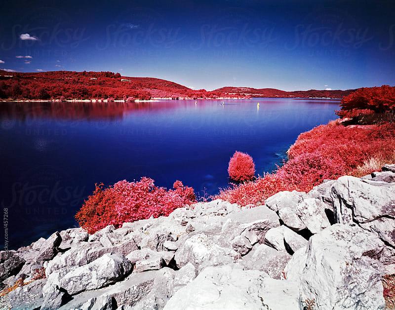 Lake landscape by Bratislav Nadezdic for Stocksy United