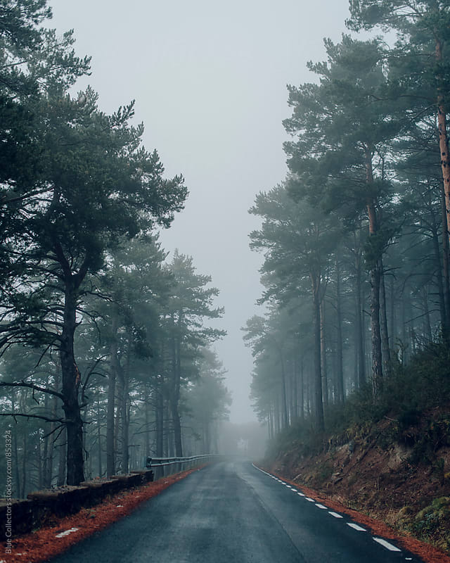 Foggy mountain road by Blue Collectors for Stocksy United