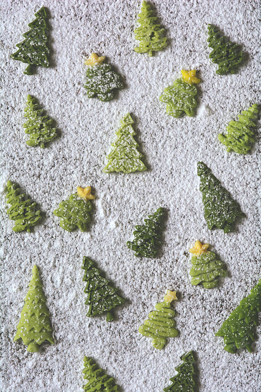 Tiny Christmas trees by Pixel Stories for Stocksy United