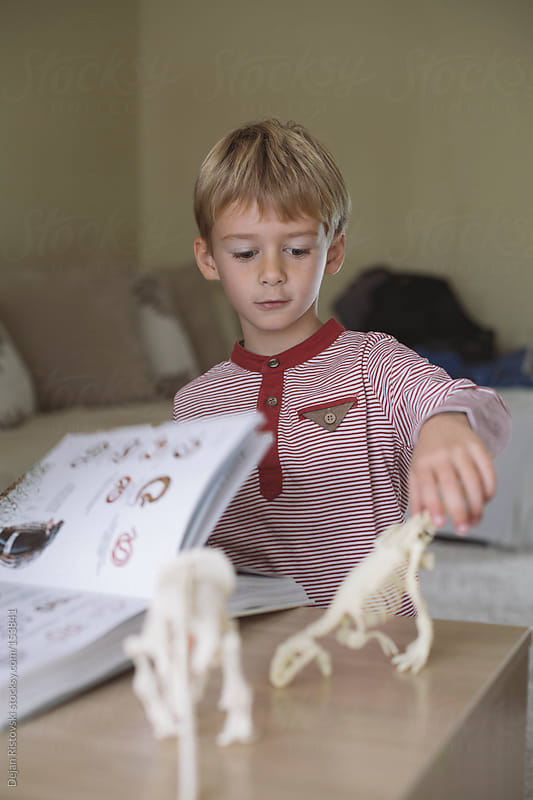 Child learning palaeontology  by Dejan Ristovski for Stocksy United