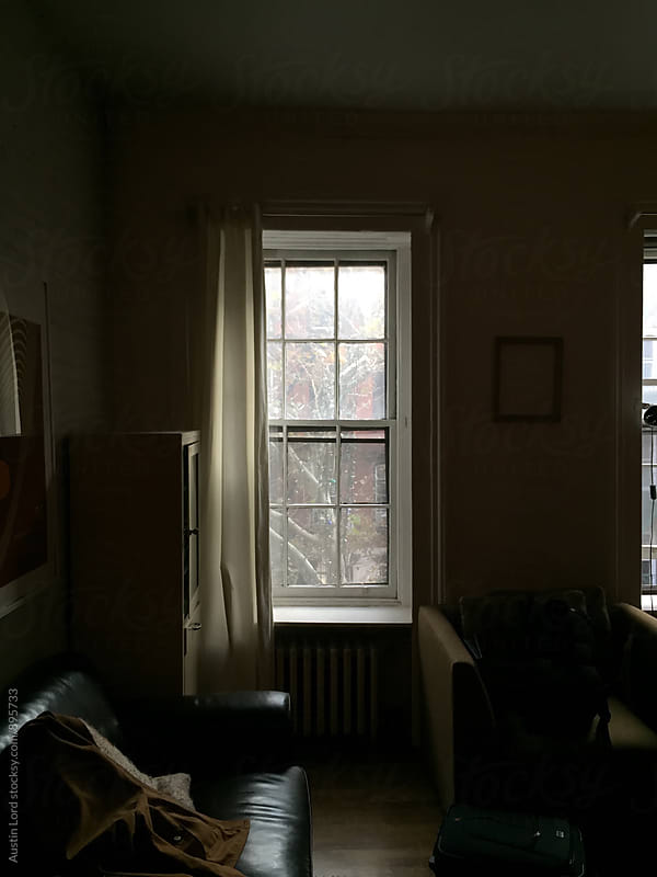 Window in New York Apartment.  by Austin Lord for Stocksy United